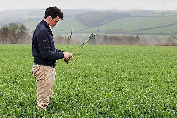 velcourt-casestudy-aaron-kew-crops